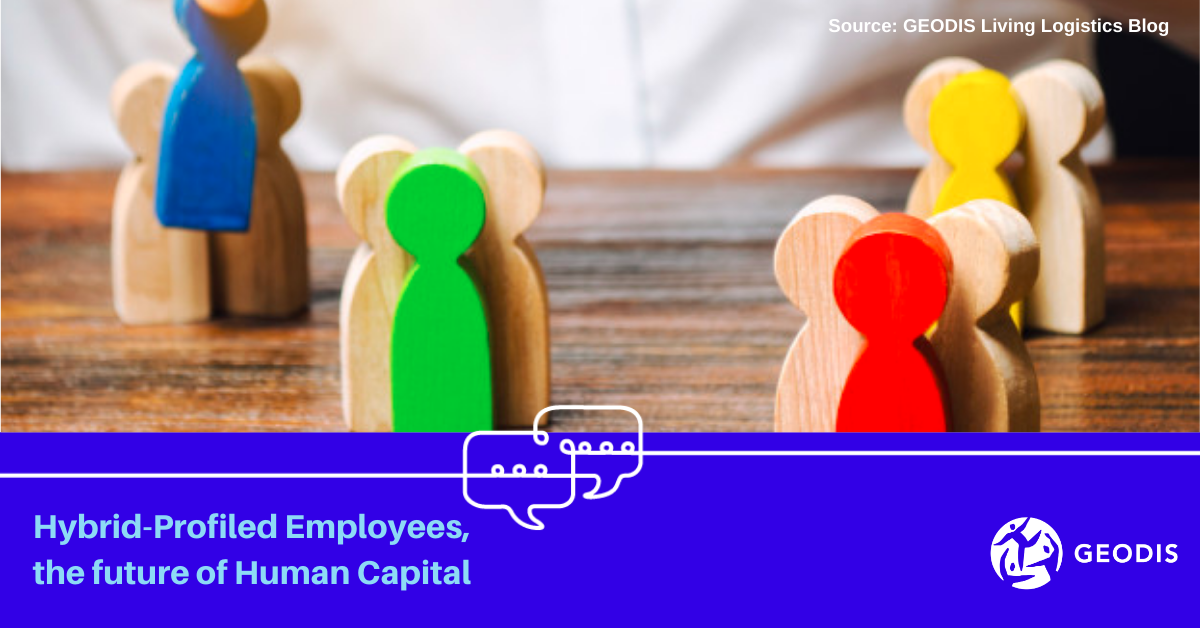 Hybrid-Profiled Employees, the future of Human Capitall